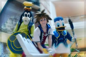Sora and Friends by Faxen