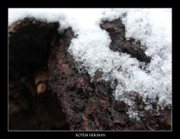 here comes the frost by Ginjit