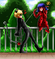 Ladybug and Cat Noir by cjwolf207