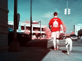 Division and Fulton - Dog Owner by KBeezie