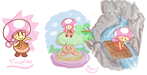 It's a Toadettes by Kapus49
