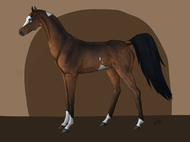 Horse Design auction - [CLOSED] by TheAdoptArtist
