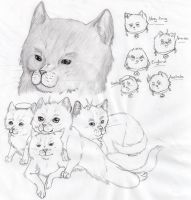Hetalia Cat sketch by nightwindwolf95