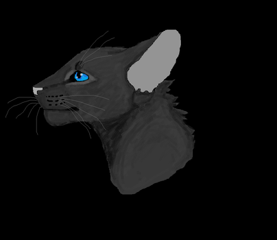 Crowfeather MS Paint by TheRealBramblefire