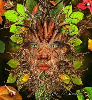 Green Man by pams00