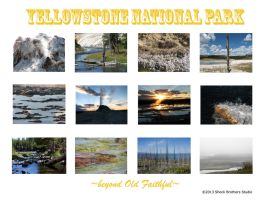 Backcover Yellowstone 2014 by kittenwylde