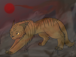 Lionpaw - Lionblaze by Maplefur