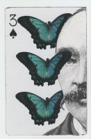 The Lepidopterist by ScottMan2th