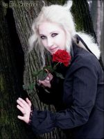 Winter Lestat XII by doctor-surgeon
