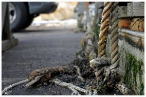 Abstract rope by EsBest