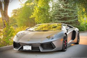 The Lamborghini Aventador by SeanTheCarSpotter