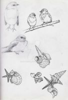 Birds and shells by EpHyGeNiA