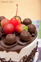 Chocolate cake 2 by patchow