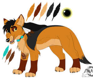 +Coyote Character Design+ by Artistic-Demise