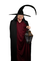 Wicked  Witch PNG STOCK by KarahRobinson-Art