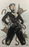 Catwoman Hands glued to hips by CycloneJin