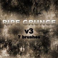 RIPE GRUNGE v3 - 7 brushes by RazorICE