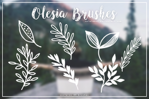 Olesia Brushes by xPlateaux