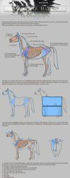 Drawing Horses Tutorial - Part 1 by Smirtouille