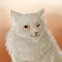 One-eye painting by paintedpaw-cat