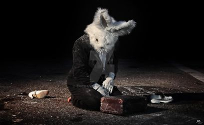 Disillusioned Rabbit by ericbayard