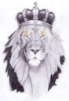 The Lion of the Tribe of Judah by christians