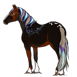 8183 AS Arkenstone by AhernStables