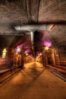 In the Dark Arches by taffmeister