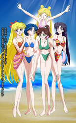 Sailor Moon Crystal poster commission by Isack503