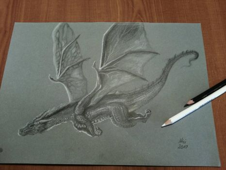 Dragon by Mrs-Industrial