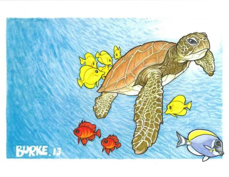 Sea Turtle by Burke73