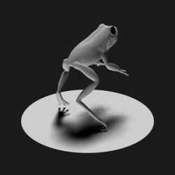 Frog by Cow-Tail