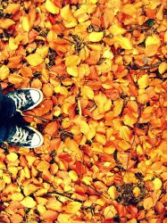 Allstars and autumn leafes by Elssa