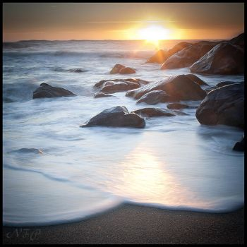 Bright beach II by nfp
