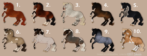 Hiatus Horse Designs - ONLY for watchers (1/10) by KittycatNita