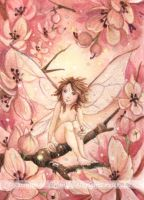 ACEO Pink Blossom Pixie by JoannaBromley