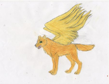 griffin by griffinthewolf