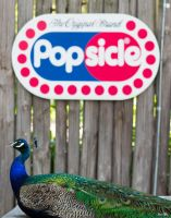 Peacock Popsicle by JamesTyson