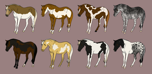 Adoptable Set 16 -Art or Points Option by angry-horse-for-life
