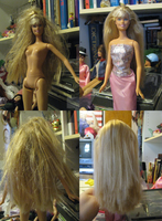 Barbie Hair Don't to Hair Do 1 by Anomalies13