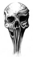 biomech skull by sylviusart