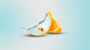 Cool Orange PhotoManipulation by ApexxDesigns