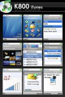 Sony Ericsson K800 : iTunes by lukevink