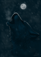 Snow Wolf by pSarahdactyls
