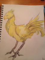 Chocobo colored by Kiba-Aido