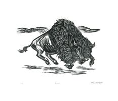 Bison by AmandaMyers