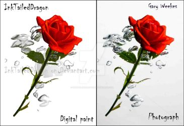 Realistic Rose and digtal paint rose by InkTailedDragon