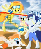 Spitfire..........playin some volleyball with pals by Spitshy