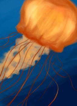 Jellyfish by QuintessantRiver