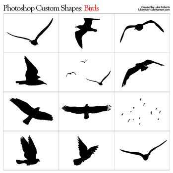 Custom Shapes: Birds by lukeroberts